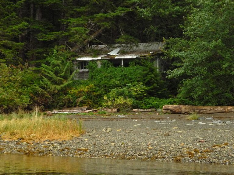 Photo of: Abandoned cottage at Wallace Bay